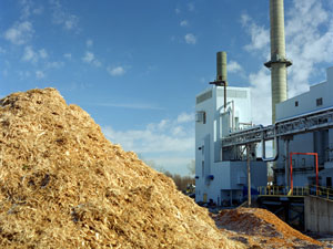 Energia da biomasse.