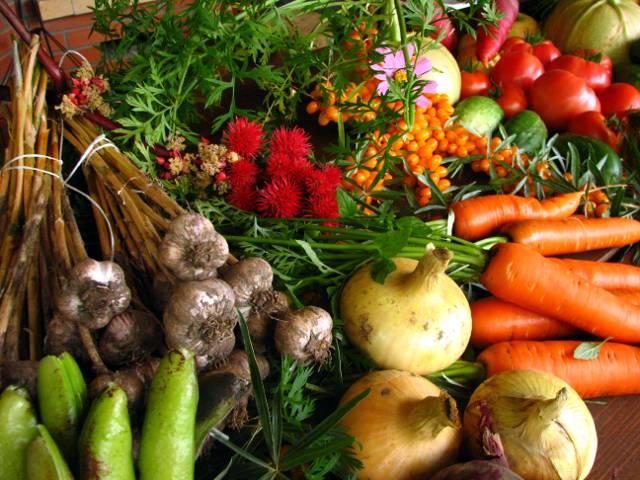 Alimenti naturali per la dieta biologica.