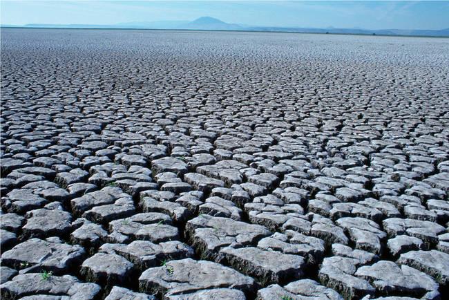 Cambiamento climatico.