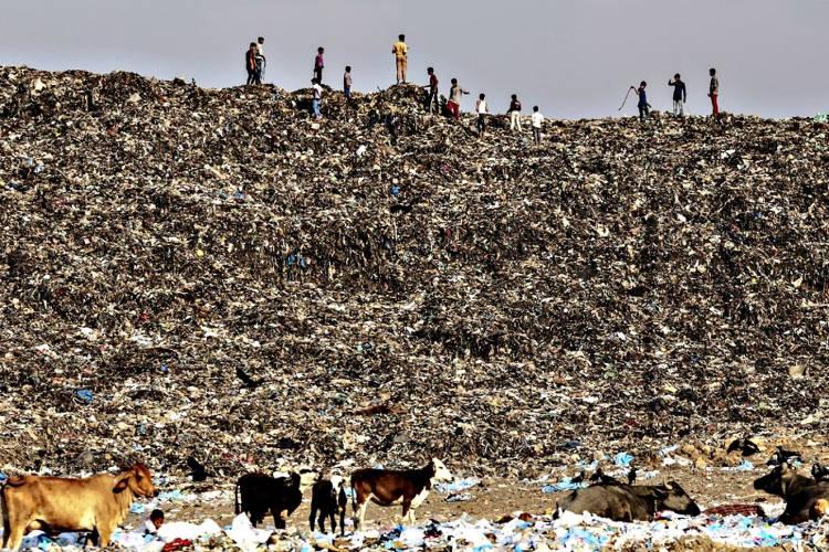 Contaminazione del suolo e dei terreni.