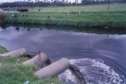 Inquinamento dei fiumi