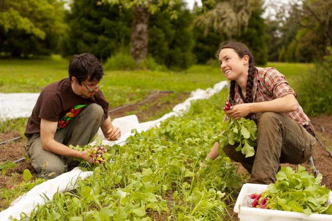 Coltiva il tuo orto e vivi meglio.